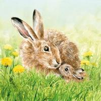 Servietten 33x33 cm - Hare Family