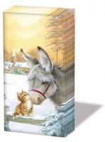 Taschentücher - Donkey And Kitten