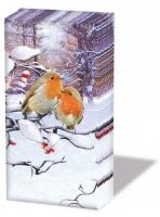 Taschentücher - Robins On Branch
