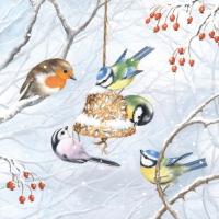 Servietten 25x25 cm - Wintervögel