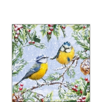 Servietten 25x25 cm - Chirping Birds