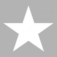 Servietten 33x33 cm - Star Silver