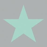 Servietten 33x33 cm - Stern Grau/Aqua