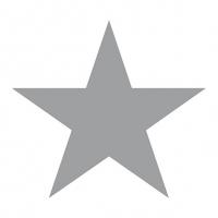 Servietten 33x33 cm - Stern Weiß/Silber