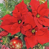 Servietten 33x33 cm - Red Poinsettia