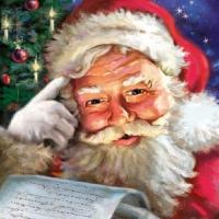 Servietten 33x33 cm - Remember Santa!