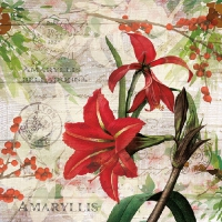 Lunch Servietten Red Amaryllis