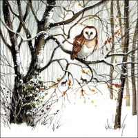 Servietten 33x33 cm - Winter Owl