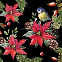 Servietten 33x33 cm - Bird On Poinsettia Black
