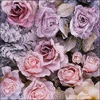 Servietten 33x33 cm - Winter Roses