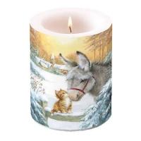 Dekorkerze - Donkey And Kitten