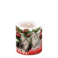 Dekorkerze klein - Christmas Kitten