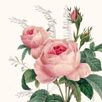 Servietten 25x25 cm - Wonderful Rose