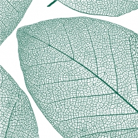 Servietten 25x25 cm - Apart, smaragd