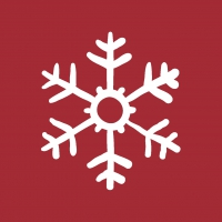 Servietten 24x24 cm - Red Snowflakes
