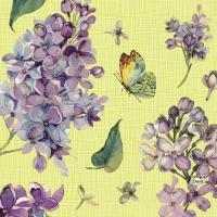 Servietten 33x33 cm - Sweet Butterfly Lime