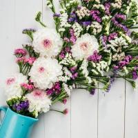 Servietten 33x33 cm - Blumenschössling