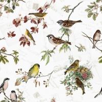 Servietten 33x33 cm - Vogelfamilie