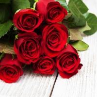 Lunch Servietten Red Roses
