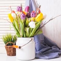 Lunch Servietten Colorful Tulip