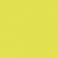 Dunisoft Servietten 20x20 cm - kiwi