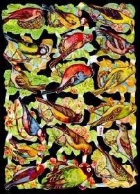 Glanzbilder - grelle Vögel