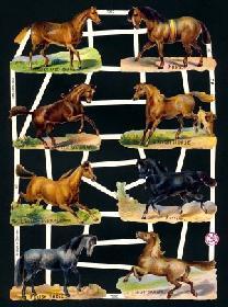 Glanzbilder - 8 Pferde