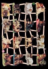Glanzbilder - Hunde
