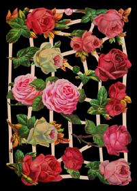 Glanzbilder - Rosen