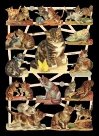 Glanzbilder mit Glimmer Katzen