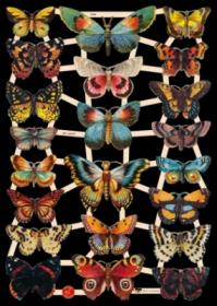 Glanzbilder mit Silber-Glimmer - 22 Schmetterlinge