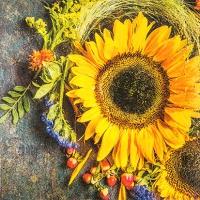 Servietten 25x25 cm - Sonniger Herbst