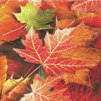 Servietten 33x33 cm - Maple Leaves