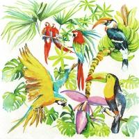 Servietten 33x33 cm - Birds of Paradise