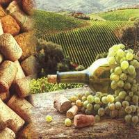 Servietten 33x33 cm - Vineyard