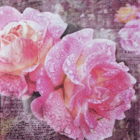 Servietten 33x33 cm - English Rose