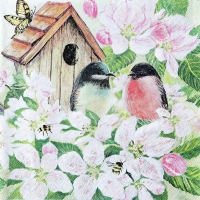 Servietten 33x33 cm - Birds and Blossom