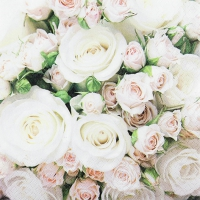 Servietten 33x33 cm - Romantic Roses