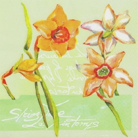 Servietten 33x33 cm - Daffodil in Spring