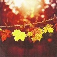 Servietten 33x33 cm - Sunny Fall