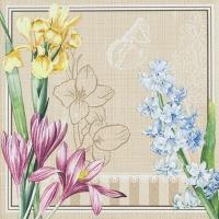 Servietten 33x33 cm - Spring Scene