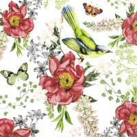 Servietten 33x33 cm - Bird and Roses