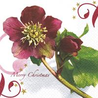 Servietten 33x33 cm - Christmas Rose