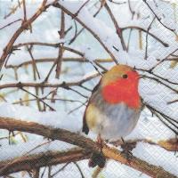 Servietten 33x33 cm - Robin in einem Winterbaum