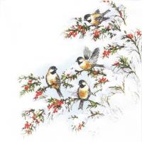 Servietten 33x33 cm - Sophyïs Vögel
