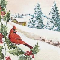 Servietten 33x33 cm - Kardinal