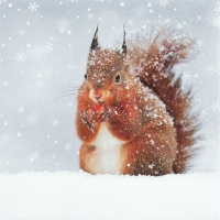 Servietten 33x33 cm - Verschneites Eichhörnchen