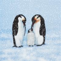 Servietten 33x33 cm - Pinguin-Familie