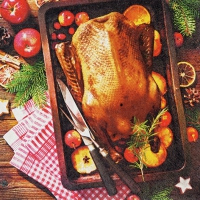 Servietten 33x33 cm - Holiday Roast