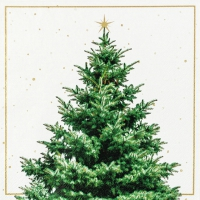 Servietten 33x33 cm - Fir Tree